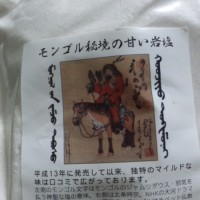 モンゴルの岩塩
