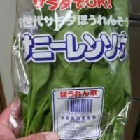 サラダ用のほうれん草