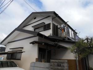 河津桜、原邸ビフォー 031